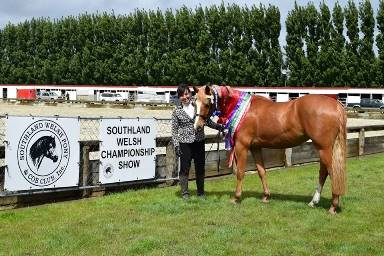 Southland Welsh Championship Show