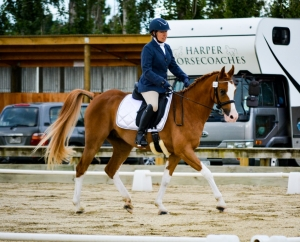 Performing at dressage